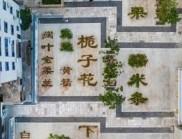 浙江中草藥花園,用植物的生長暈染出光陰的色澤