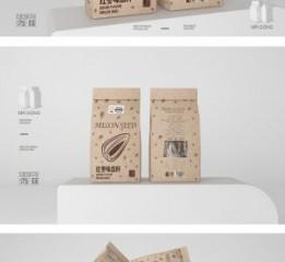 宫师傅开心果瓜子食品包装设计-已定