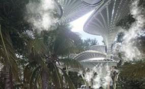 棕榈叶外形的天棚惊现在阿布扎比市区
